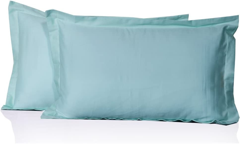 Brand New 2 Qty Pillow Case All Size 1000 TC Pima Cotton Light Blue Solid