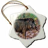 3dRose Danita Delimont - Pigs - India. Indian boar at Kanha Tiger reserve. - 3 inch Snowflake Porcelain Ornament (orn_276778_1)