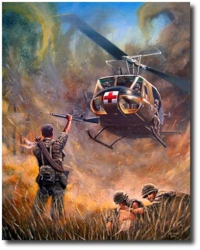 Dust Off by Joe Kline - UH-1H Huey Medevac Helicopter-, used for sale  Delivered anywhere in USA
