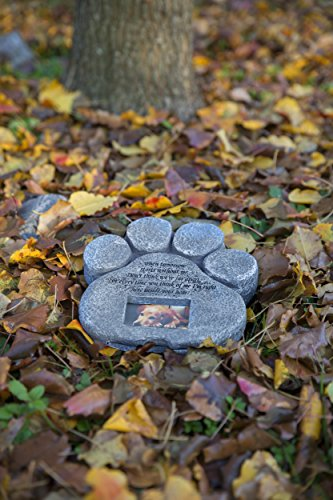 The 8 best pet memorials with picture