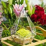 86inches-Silver-Handmade-Hanging-Glass-Geometric-Terrarium-Diamond-Teardrops-Shape-Display-Planter-Succulent-Air-Plants-Holder-Indoor-Diy-Decor-Flower-Pot-Box-Centerpiece-Vase-for-Coffee-Table-Top