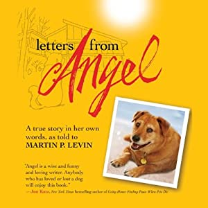 Letters from Angel Audiobook