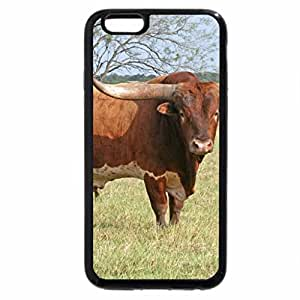 iPhone 6S / iPhone 6 Case (Black) longhorn-cattle