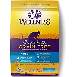 Wellness Complete Health Natural Grain Free Dry Cat Food, Adult Health Deboned Chicken & Chicken Meal Recipe, 11.5-Pound Bag