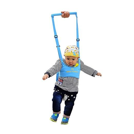 Amazon.com: Baby Walker - Asistente de caminatas, caminante ...