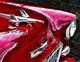 1955 Chevy Bel Air Hood Ornament Print Vintage Classic Car - Automobile Fine Art Photography 8.5 x 11