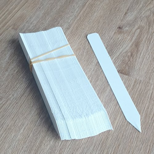 100 6 x 5/8 White plastic plant stake labels tags pot markers etiquetas easy to write with most markers reusable help You to keep tracking your seedlings BY DMARKETLINE
