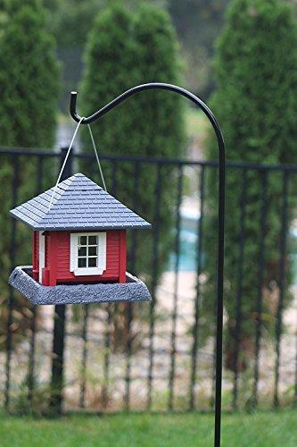 Buy hanging feeder bird
