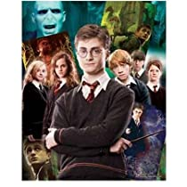Visual Echo 3D Effect Harry Potter Collage 500pc Lenticular Puzzle