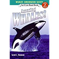 Amazing Whales! (I Can Read Level 2, Band 2)