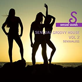 Sensual groovy house vol 2 various artists for Groovy house music