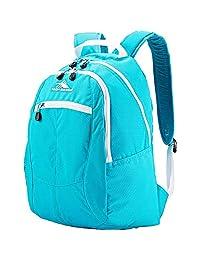 High Sierra 54107-0 18.5X12.5X8.5-Inch Backpack