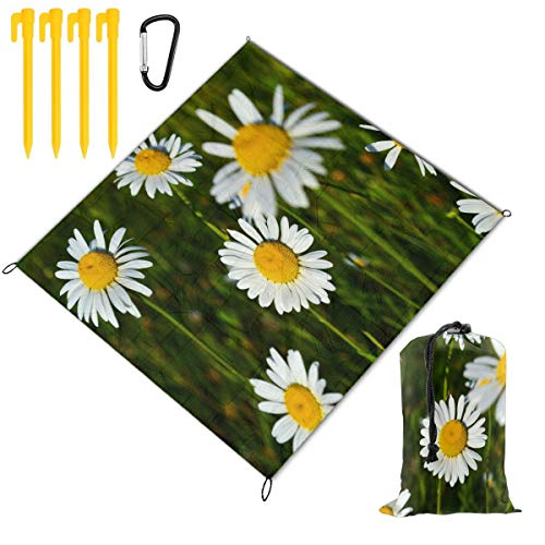 Rachel Dora White Daisies Pretty Flowers Picnic Blanket Foldable Waterproof Set with Drawstring Bags Custom Portable Mat for Outdoor Camping Hiking Travelling Festival Beach BBQ 78 x 57 inch