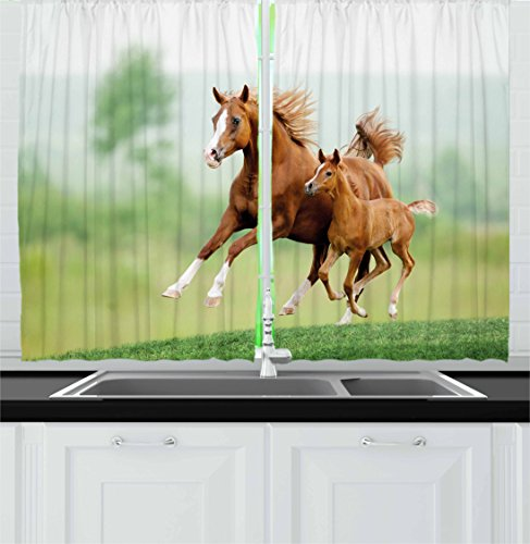 Ambesonne Horse Decor Kitchen Curtains, Running Chestnut Horses Mare and Foal Meadow Scenic Summer Day Outdoors, Window Drapes 2 Panel Set for Kitchen Cafe, 55 W X 39 L Inches, Light Brown Green Review