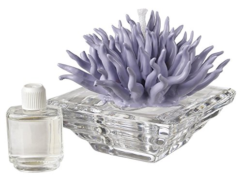 Debora Carlucci Italian Porcelain Diffuser Decorative For Aroma Coral Top, And Crystal with Floral Scent, Lavender by 5th Ave Store