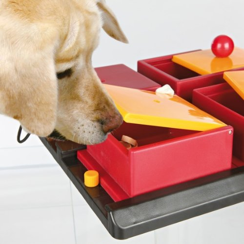 TRIXIE Pet Products Trixie Poker Box, Level 2 by TRIXIE Pet Products (Image #4)