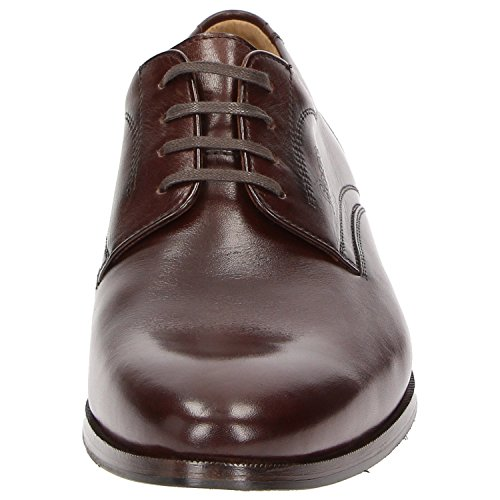 Sioux Flats Up brown brown Men's Lace nvHfwvapq
