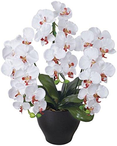 光触媒 造花 光の楽園 胡蝶蘭セリースW/AB 22A100 B00XHQI67S ホワイト2 ホワイト2