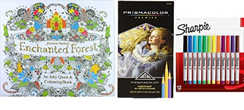 Enchanted Forest Colouring Book Colored Pencils Sharpie Markers GIFT SET