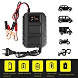 Auntwhale Battery Charger Car Battery Charger