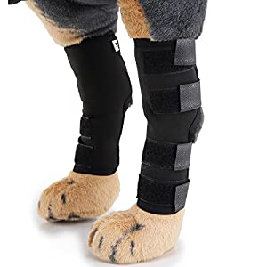 MDCT Dog Rear Leg Hock Brace Canine Joint Wrap Protects Wounds as They Heals and Prevents Injuries and Sprains Helps… Click on image for further info.