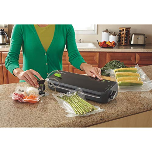 New Foodsaver Fm2000 Ffp Vacuum Sealing System With