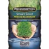 PENNINGTON SEED Smart 100086835 Bluegrass Fescue Seed