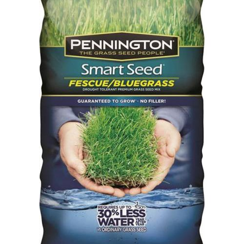PENNINGTON SEED Smart 100086835 Bluegrass Fescue Seed by Pennington Seed (Image #1)