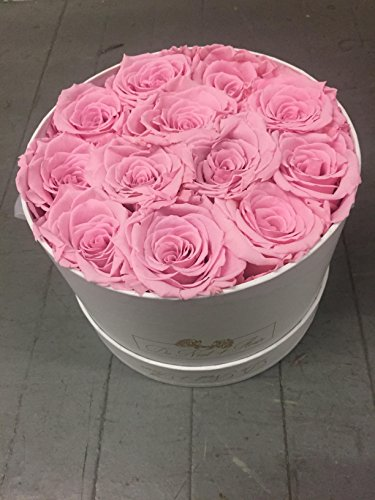 Pink Preserved Roses in Elegant white round box by De Niat fleur