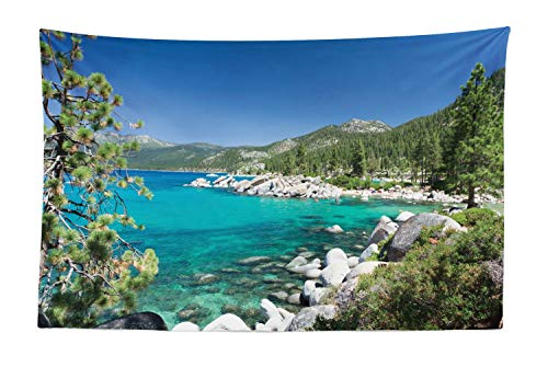 Ambesonne Lake Forest Tapestry, Lake Tahoe Shore Rocks Amazing Turquoise Water, Fabric Wall Hanging Decor for Bedroom Living Room Dorm, 45 W X 30 L Inches, Turquoise Fern Green Azure Blue Pale Grey