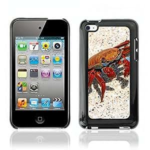 Carcasa Funda Case // Crab V0000088 // Apple Ipod Touch 4 4th