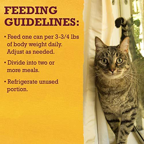 Purina Beyond Grain Free, Natural, Adult Wet Cat Food 13