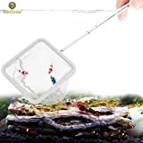 SunGrow Shrimp Net: Professional Grade Stainless Steel Telescopic handle: Soft woven Fishing Net : Safe for All Aquatic pets: Easily catch shrimp, betta and guppies