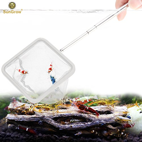 - SunGrow Shrimp Net: Professional Grade Stainless Steel Telescopic Handle: Soft Woven Fishing Net : Safe for All Aquatic Pets: Easily Catch Shrimp, Betta and Guppies