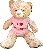 Large Personalized Teddy Bear (Pink)