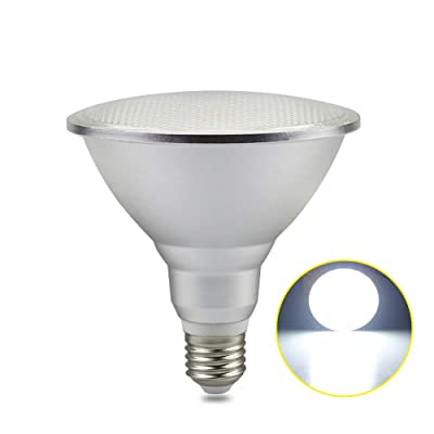 RAYWAY LED PAR38 Flood Light Bulb 100-120 Watt Replacement Bulb (Uses 20 Watts) 6000K Cold White Indoor Outdoor Spotlight for Garden Chirstmas Decor (Cold White)