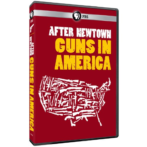After Newtown: Guns in America (Best Selling Rifles In America)