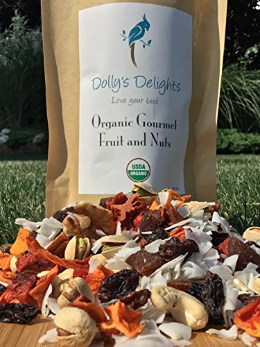 51ftg0N19OL - Dolly's Delights Organic Gourmet Fruit & Nut Blend Parrot Food & Treats