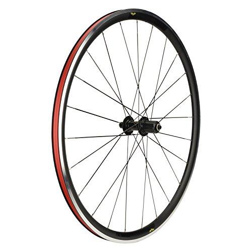 Forte Titan II Rear Bicycle Wheel