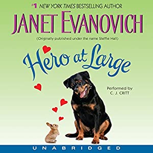 Hero at Large Audiobook