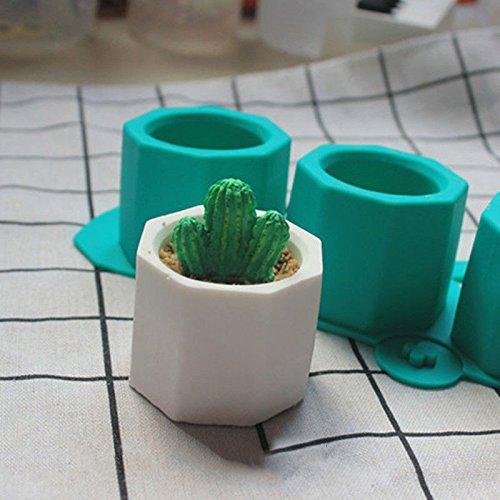 Arcilla de cer/ámica Flores Poligonal Sinnper Molde de Silicona para Cactus Hecho a Mano