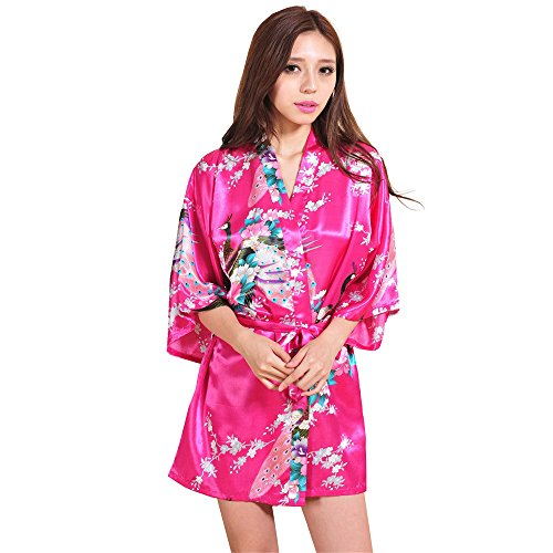 eeves Long Silk Robe Sexy Camis Nightdress Nightwear Sleepwear(Hot Pink,2XL) ()