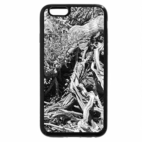 iPhone 6S Plus Case, iPhone 6 Plus Case (Black & White) - gnarled wood of a dead plant