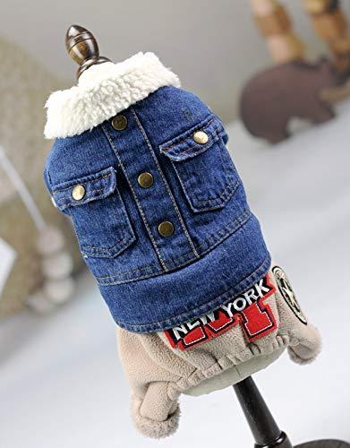 HeiPlaine Cappotto Carino Pet Forniture Vestiti per Cani Abbigliamento a Quattro Zampe Autunno e Inverno Maglione Abbigliamento (colore  Blu, Taglia  S) Vestiti Carini (colore   Blu, Dimensione   S)