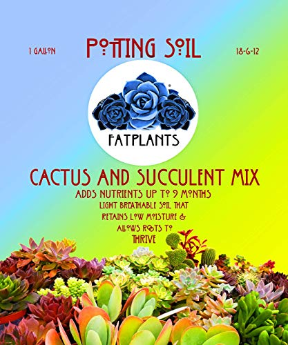 Fat Plants San Diego Premium Cacti and Succulent Soil - http://coolthings.us