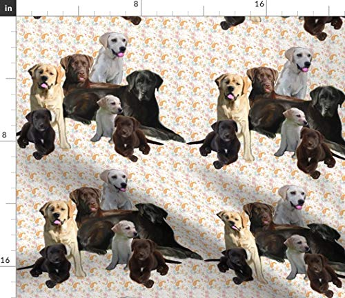 Spoonflower Labrador Retrievers Fabric - Lab Dogs Animals Paisley Pastel Print on Fabric by The Yard - Petal Signature Cotton for Sewing Quilting Apparel Crafts Decor