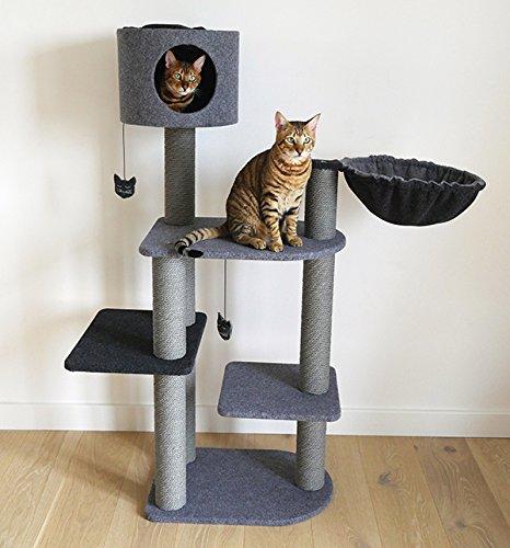 Rascador para Gatos de Color Rosa Elegante y Moderno, Hecho de Fieltro y Cuerda, Color Gris: Amazon.es: Productos para mascotas