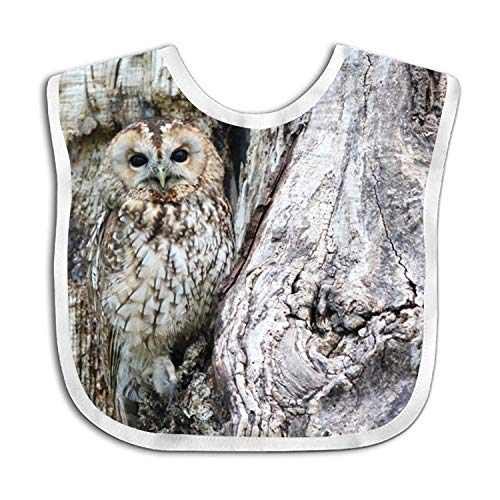 Owl Camo Baby Drool Bibs, Unisex Gift for Drooling and Teething, Soft and Absorbent