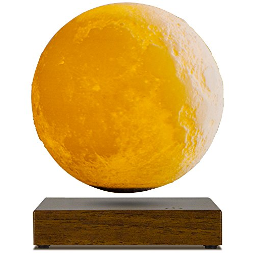 Bestselling Figurine Lamps