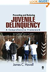 Preventing and Reducing Juvenile Delinquency: A Comprehensive Framework (Paperback)